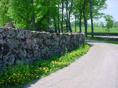 Country road with rock wall
